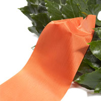 Orange ribbon