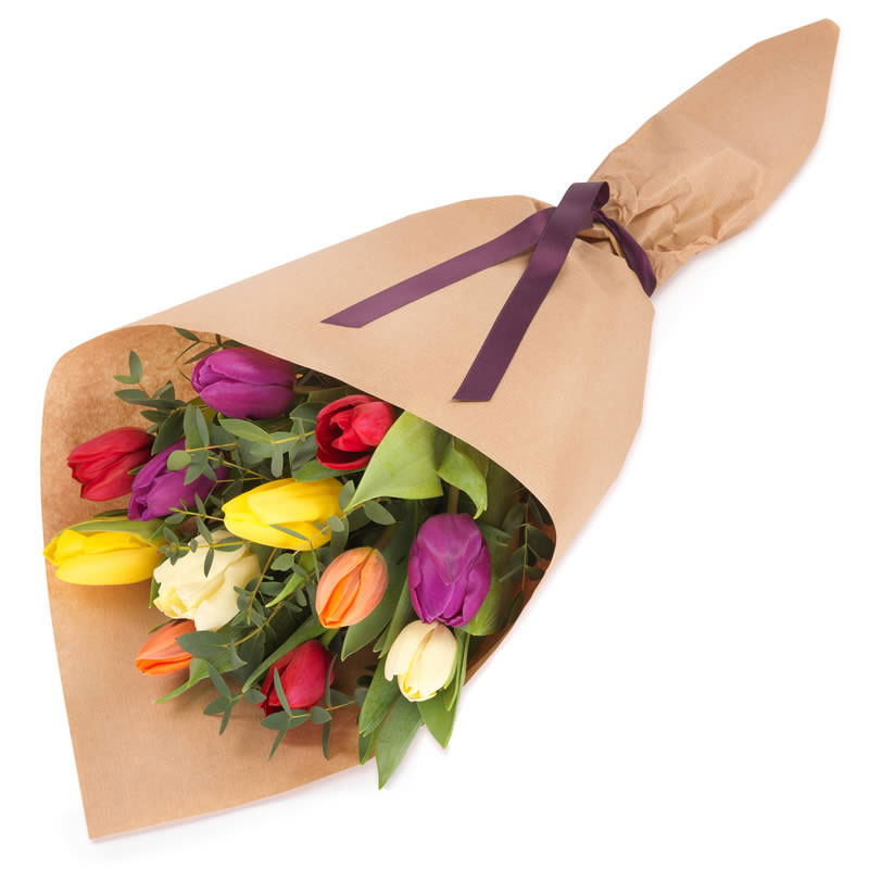 Gift wrapped mixed tulips