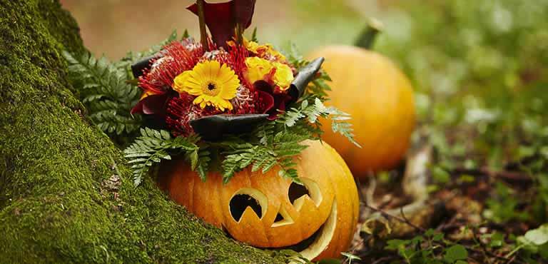 Stuur bloemen voor Halloween