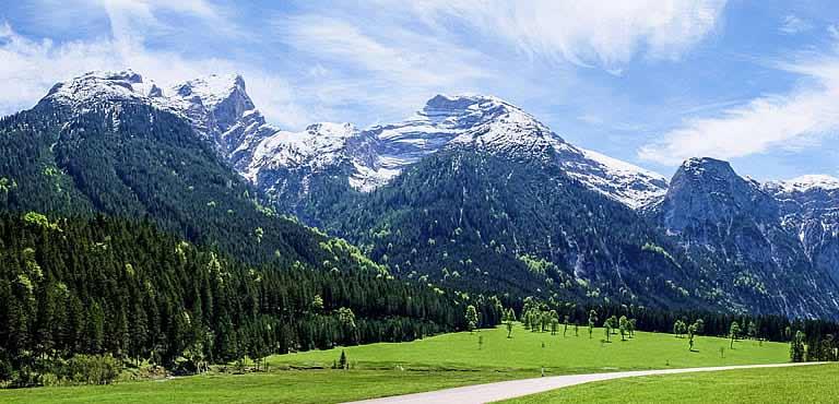 Bloemen sturen naar Oostenrijk