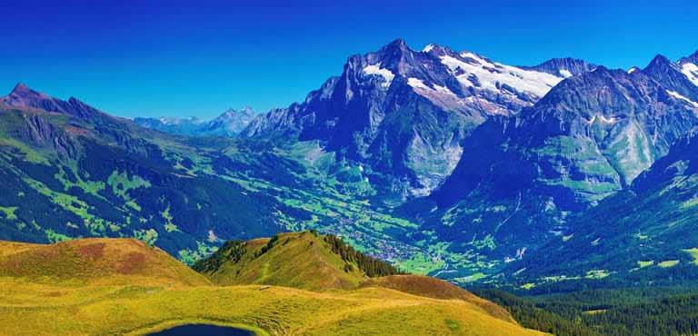 bloemen bezorgen in Zwitserland