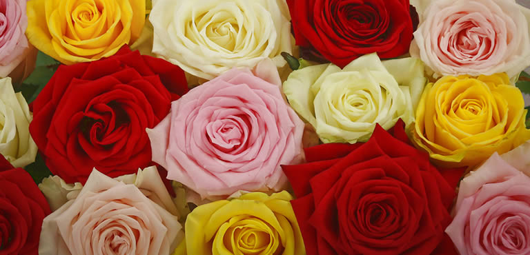 Valentine's giftsets