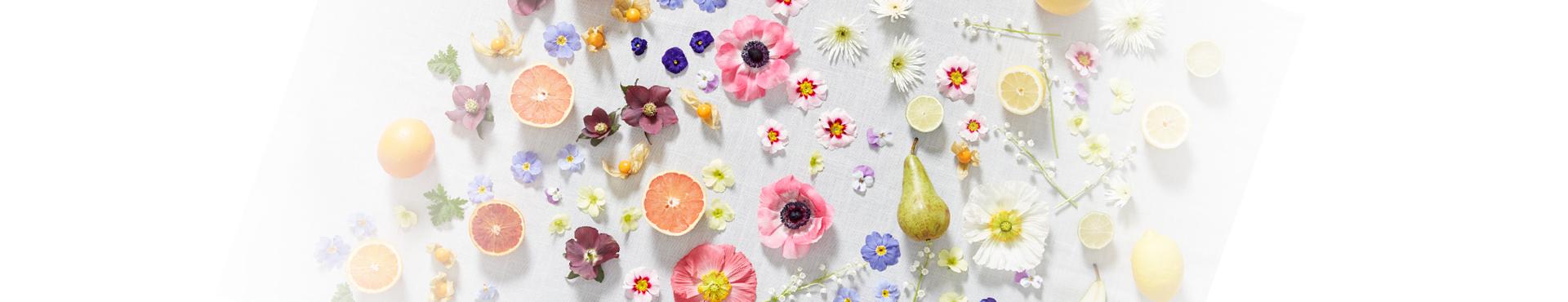 Voorjaarsbloemen - Haal de lente in huis]