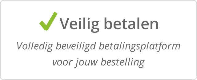 USP_NL_Veilig betalen