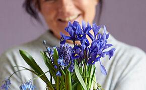 Februari - Iris