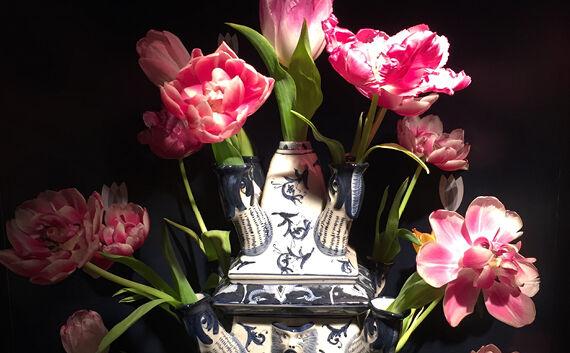 Trendy tulpen