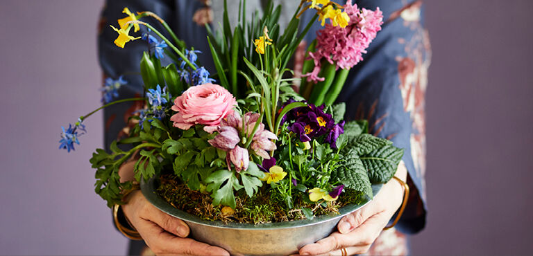 Voorjaarsbloemen bezorgen