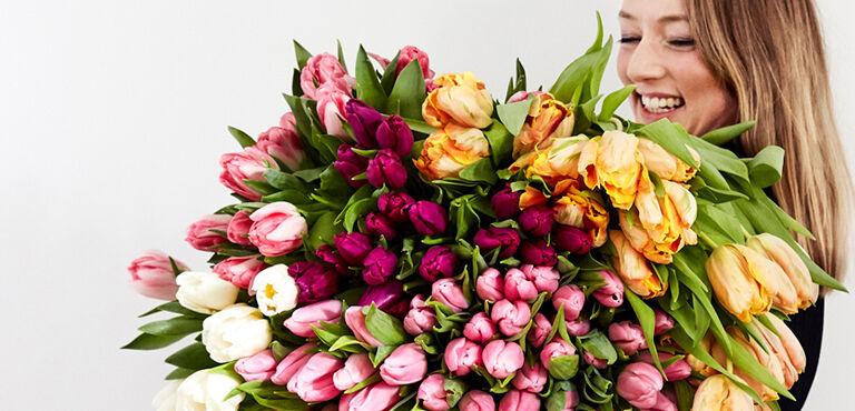 Tulpen bestellen