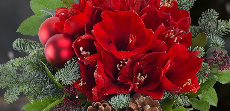 Kerstbloemen bezorgen